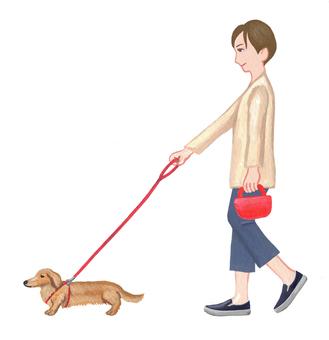 Dog walk 2