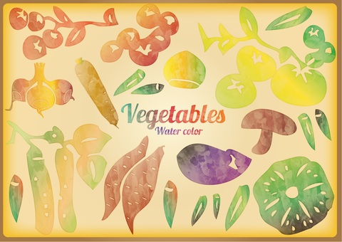 Design: watercolor and vegetables