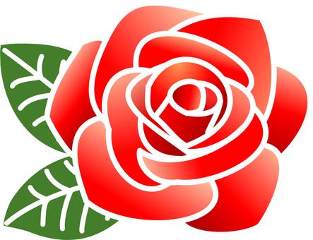 Rose _ red (line white