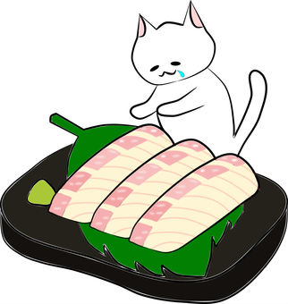 Nyanko and the sea bream sashimi
