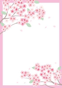 벚꽃의 프레임 4