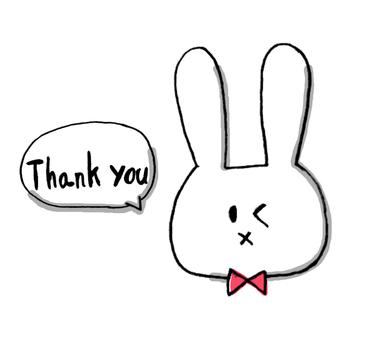 Thank you Rabbit