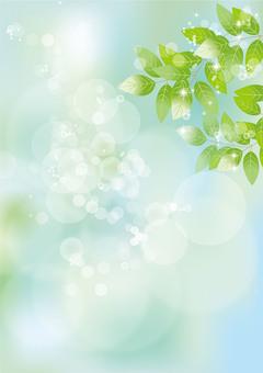 Glittering leaves & sky 63