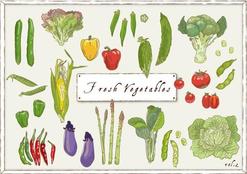 Vegetable _ 02