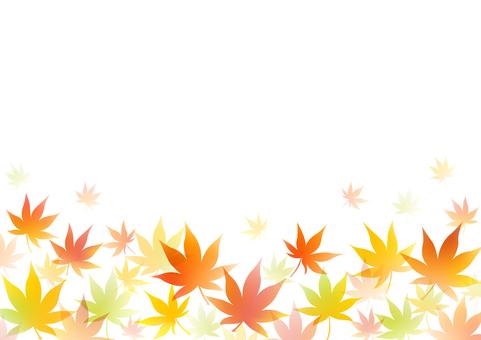 Autumn 178