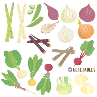 Variety of vegetable set