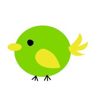 Green bird 10