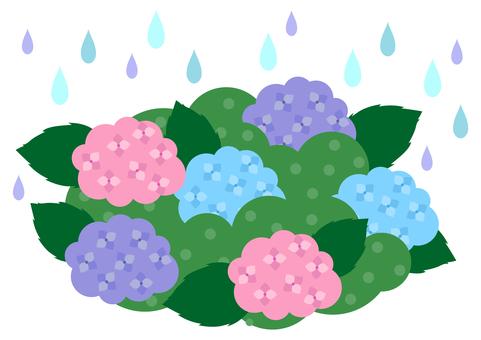 Rainy season image material 29