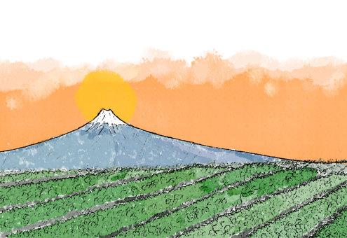 富士山と茶畑日の出(透過)
