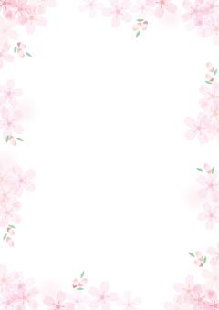 Sakura 5