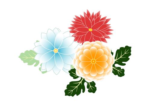 Chrysanthemum and Dalia