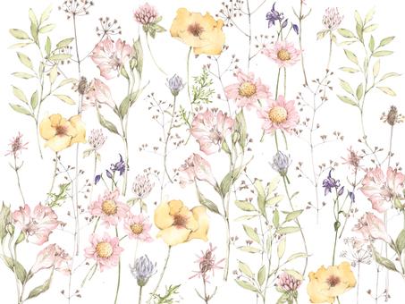Flower frame 312 - Pastel color garden flower frame