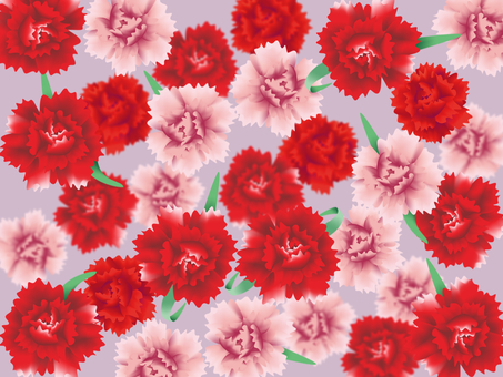 A lot of carnations ~