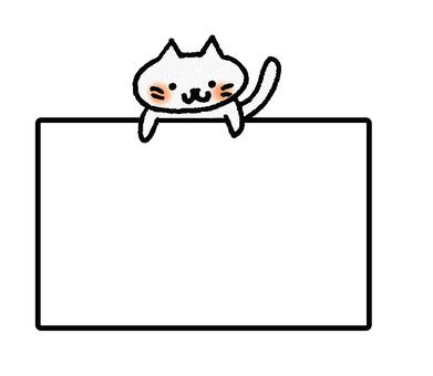 Cat message