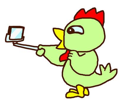 Self bird