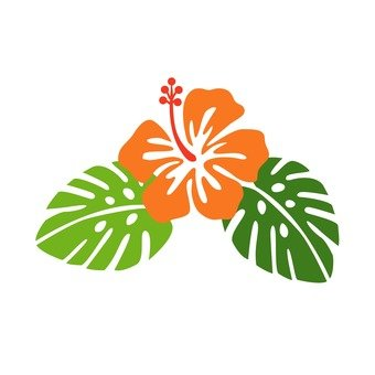 Hawaiian plant 21