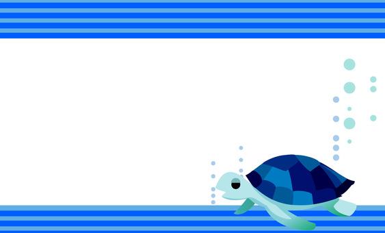 바다 거북 프레임 명함 거북이 2