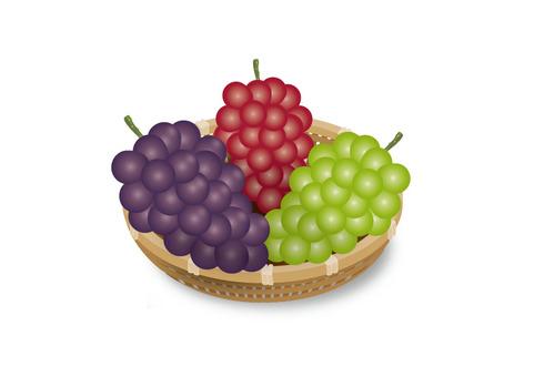 3 kinds of grape