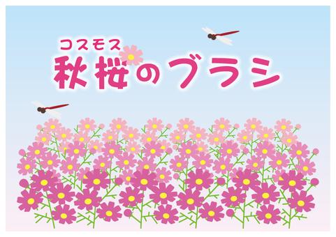 秋桜コスモスのブラシ