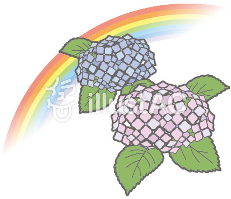 月別-6月-虹とあじさいのイラスト
