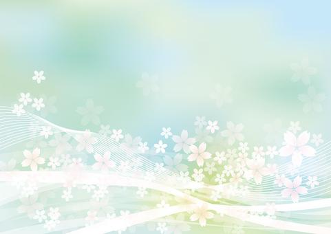 벚꽃 & 라인 1