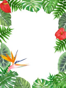 Tropical plant frame (vertical)