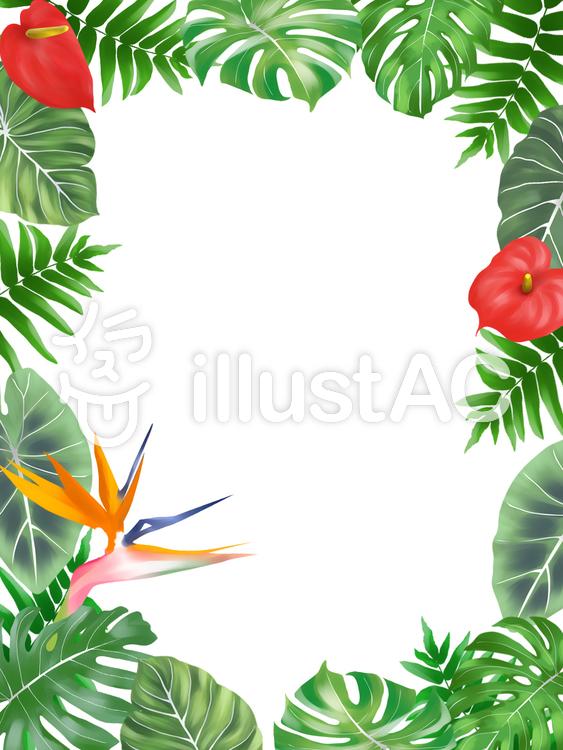 熱帯植物フレーム(縦)