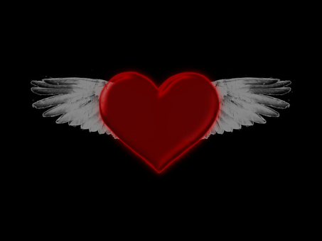 Feather heart 1
