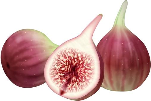 Figs / 4