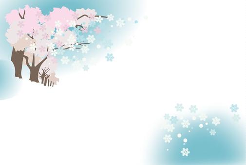 Sakura · snow 01