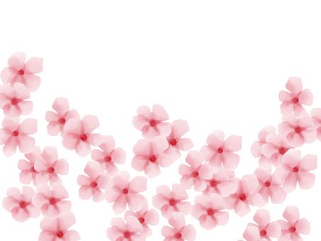 Daily grass light pink 2