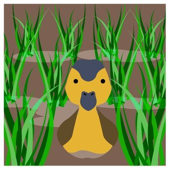 Duck in rice field