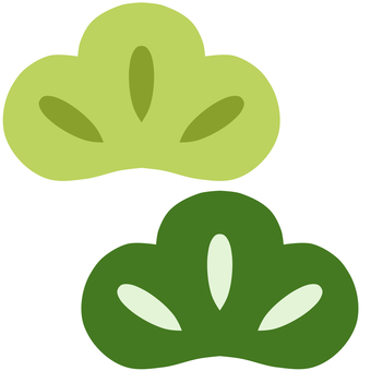 Japanese pine green
