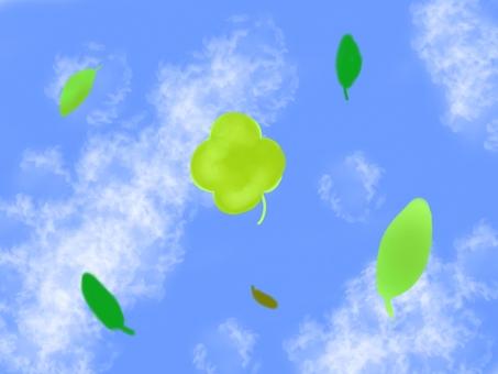 Blue sky and four-leaf clover