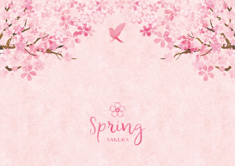 Spring background frame 028 Sakura watercolor paper