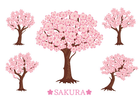 Spring cherry tree summary material _ light pink