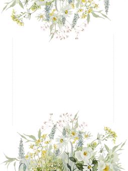 꽃 테두리 200- 밝은 색상의 꽃 프레임, 흰색 야생 장미