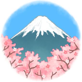 Fuji and cherry blossoms