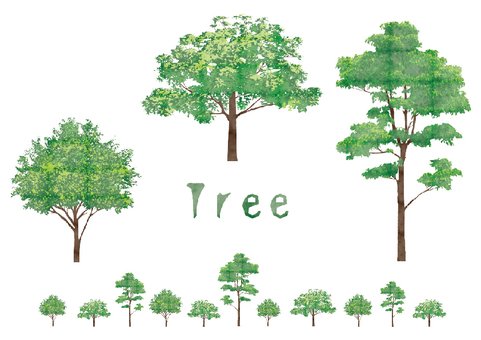 Illustration _tree
