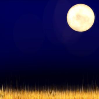 滿月和Susuki