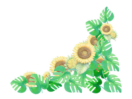 Sunflower and Monstera ★ 0208-F