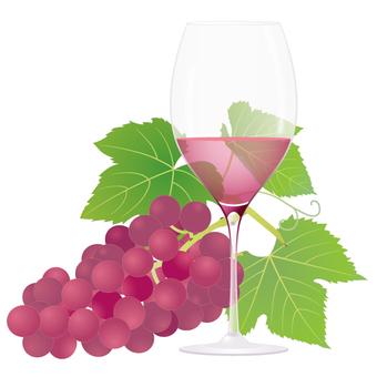 Wine _ rose