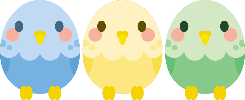 3 색 잉꼬