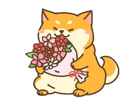 Bouquet dog