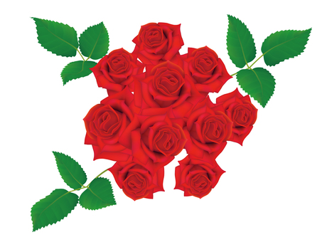 Rose bouquet _ red