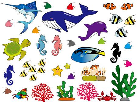 바다 생물들의 경계선 선 유