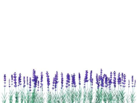 라벤더 수채화 풍