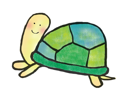 Nice tortoise