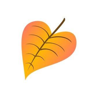 Heart-shaped fallen leaves