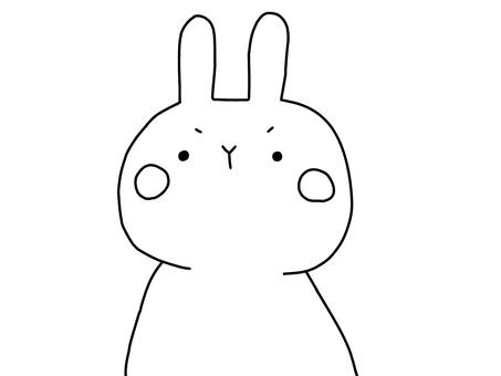 단정 한 토끼 1 1